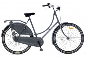 Popal Basic 28 Inch Woman Coaster Brake Matte Grey