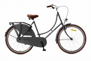 Popal Omafiets 26 Inch Girls Coaster Brake Grey