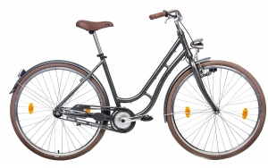 Tretwerk Nostalgie 28 Inch Woman Coaster Brake Anthracite