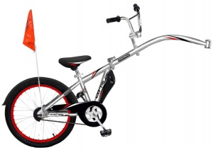 WeeRide Co-Pilot 20 Inch Junior Zilver