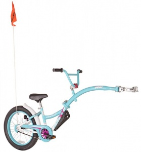 WeeRide Co-pilot XT 20 Inch Junior Turquoise
