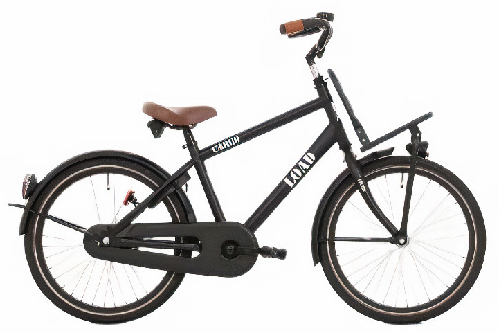 Bike Fun Load 20 Inch 33 cm Jongens Terugtraprem Matzwart