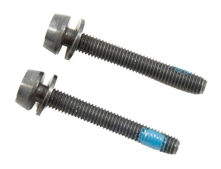 Campagnolo bouten voor schijfremklauw achter 34 mm 2 stuks