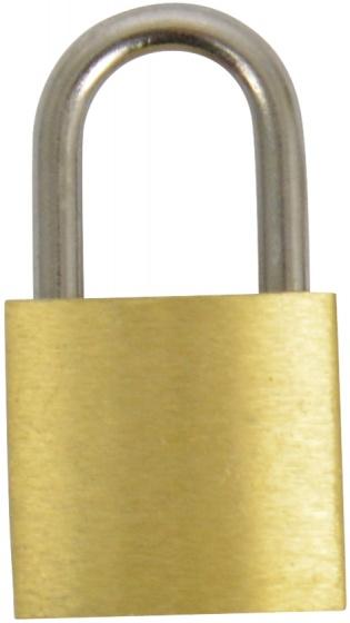 Carpoint hangslot 20 x 3 mm goud