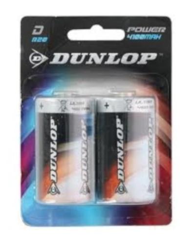 Dunlop batterijen R20 D zink 2 stuks