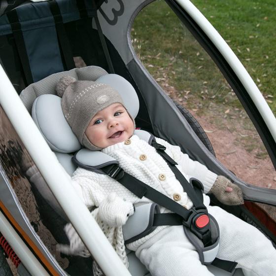 Hamax babyzitje fietskar Outback/Avenida grijs